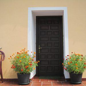 Puerta de entrada con macetas